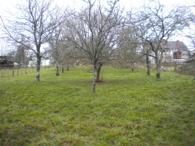 IN A HAMLET, BUILDING PLOT SET ON  1461 SQM  for sale for 7,000€ in Charente, Poitou-Charentes